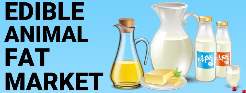 Edible Animal Fat Market